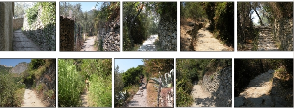 trails